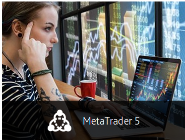 gomarkets-metatrader-5