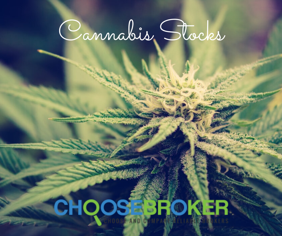 investing-in-cannabis-stocks